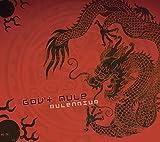 Songtexte von Gov't Mule - Mulennium