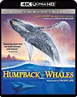 IMAX: Humpback Whales (4K UHD / 3-D Bluray/ Digital Copy) [Blu-ray]