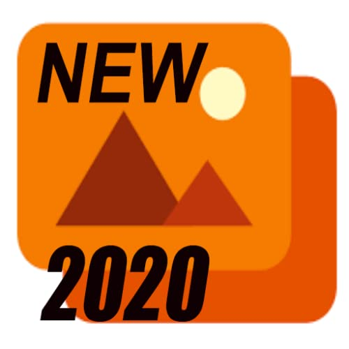The New Gallery 2020