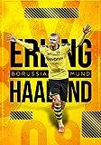 ERLING HAALAND: BORUSSIA DORTMUND I Fußball-Notizbuch