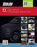 Light Vehicle Compressed Natural Gas Test Study Guide (Motor Age Training) by Motor Age Staff (2013-08-02)