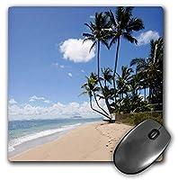 3D Rose'Kaaawa Beach Park Oahu Hawaii Shadow' Matte Finish Mouse Pad - 8 x 8' - mp_230686_1 [並行輸入品]