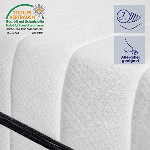 Kaltschaummatratze Rollmatratze Made in Germany 7 Zonen, Matratze mit Härtegrad H2&H3 (ÖKO-TEX® 100 zertifiziert, Bezug waschbar bis 60 Grad, Rollmatratze)