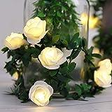 Kitmose 40 LED 19.8ft Flower Rose Vine String Lights, Warm White, Battery Operated Romantic Fairy Light Lamp for Valentine's Day, Wedding, Room, Garden, Christmas, Patio, Festival Party Decor