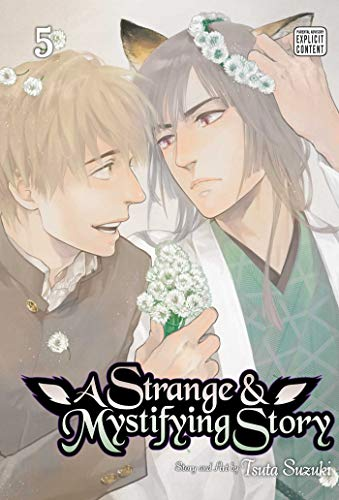 A Strange and Mystifying Story, Vol. 5 (5)