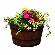 Lets Grow Botanico Whiskey Planter