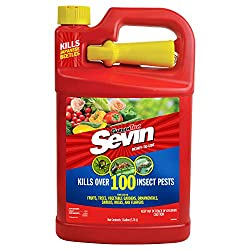Sevin Ready To Use Bug Killer