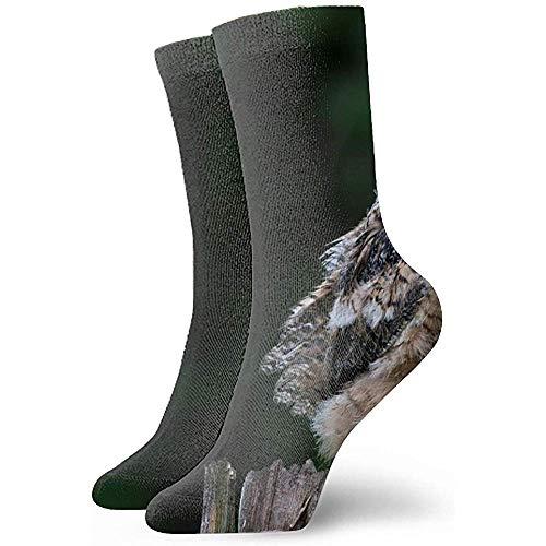 Chongha dames heren casual sokken kunstpatroon valken vogels