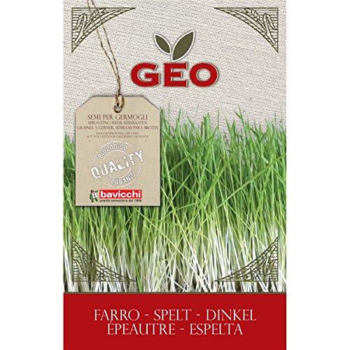 Geo Graine à Germer Epeautre Brun 12,7 x 0,7 x 20 cm