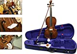 Immagine 1 stentor student 1 violino 4