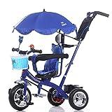 Triciclos- Trike para niños Carruaje para bebés niños Bicicleta 1-6 años Bebé Grande para niñas Coche 3 Ruedas (Color : Azul)
