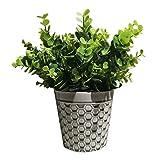 jinyi2016SHOP Plantas Artificiales Artificial suculentas Plantas Falsas Realista con Simple crisol de cerámica Flor for el hogar y la decoración de la Oficina Planta Falsa (Color : B)