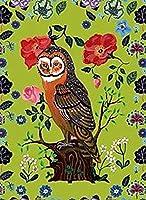大人のためのDIY油絵キットキャンバス絵画番号でペイント家の装飾壁最高の贈り物フクロウと花の風景-40cmx50cm