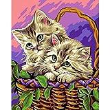Pintura acrílica por números para adultos cesta de flores gato moderno dibujo pared arte para decoración del hogar arte 40 x 50 cm sin marco