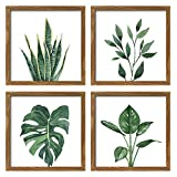 ArtbyHannah 10x10 Inch 4 Panels Botanical Framed Walnut Finish Picture Frame Collage Set for Wall Art Décor with Watercolor Green Leaf Tropical Plant Square Frame for Gallery Wall Kit or Home Decoration