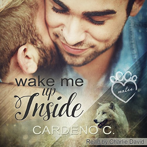 Wake Me Up Inside cover art
