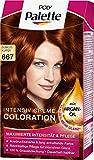 Poly Palette Intensiv Creme Coloration, 667 dunkles kupfer stufe 3, 3er Pack (3 x 1 Stück)