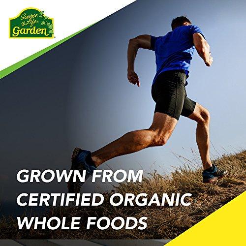 NaturesPlus Source of Life Garden Organic Bone Supplement with AlgaeCal - 1000 mg - Calcium, Magnesium - 120 Vegan Capsules (30 Servings)