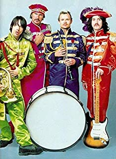 zolto Poster Red Hot Chili Peppers Funk Rock Band Anthony Kiedis Flea Chad Smith, Josh Klinghoffer, John Frusciante Poster 12 x 18 Inch