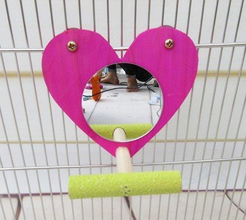 Hypeety Bird Parrot Miroir jouet avec perchoir pour perroquet perruche perruches Calopsittes Amazones Finch inséparables Gris du Gabon Ara Amazon cacatoès Cage à oiseaux Bois Perchoir de support (couleur aléatoire)