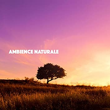 Ambience Naturale