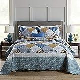 Qucover Tagesdecke Bettüberwurf 220x240 cm für Doppelbett Gesteppte Decke Set mit Kissen Patchwork Stil Blümchen Hellblau
