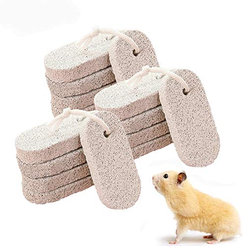 kathson Teeth Grinding Lava Block Hamster Chew Toy for Small Animal Chinchilla Bunny Rabbit (Pack of 15)