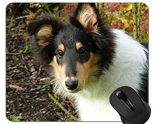 Yanteng Cute Pug Dog Mouse Pads, Collie Comfortable Mouse Mat para Juegos y Oficina