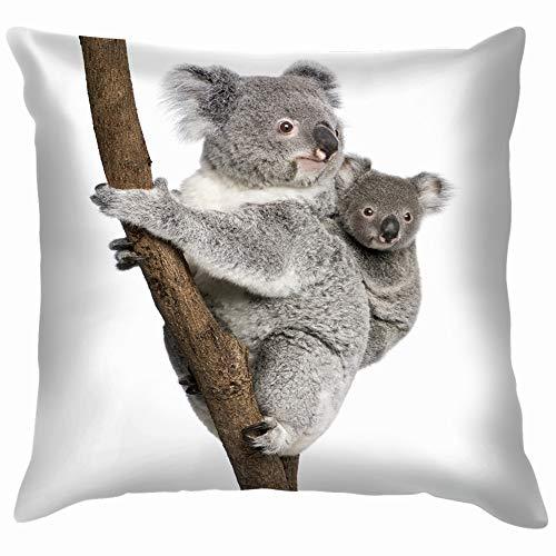 Chou_Joo_Home Koala Bears Árbol de escalada 4 años animales de la vida silvestre Koala animales de la vida silvestre Koala Throw fundas de almohada fundas de almohada fundas de almohada 20 x 20 pulgadas