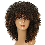 XINRAN Omber Brown Kinky Curly Wig for Black Women,Short Curly Afro Wigs with Bangs,Synthetic African American Full Hair Wig 14inch