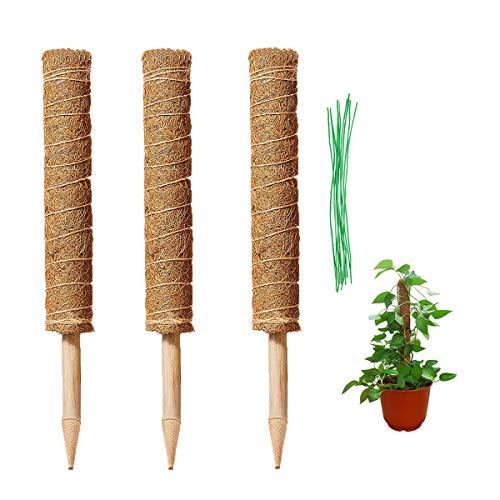 HH-LIFE 3 Stück X 43 cm Moosstab Rankhilfe Pflanzstab mit 10 Drehbändern für Pflanzenname Pflanzzeit Rankhilfe Monstera aus Kokosfaser für Haus Garten Pflanzenunterstützung Kokosstab Verlängerung