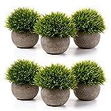 T4U Piante Artificiali in Vaso Set di 6, Pianta in Vaso di Fiori Finti Verde Erba Floreali Miste Artificiali Casa e Ufficio Decorativo del Desktop Davanzale Bonsai Decorazione