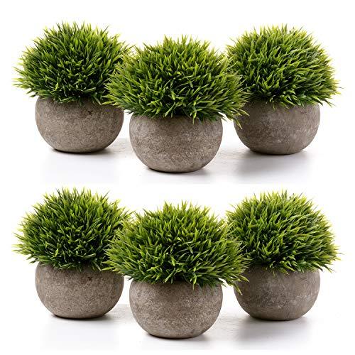 T4U Kunstpflanze Künstliche Topfpflanze Gras Bonsai mit Topf 6er-Set klein, Zuhause Wohnung Büro Dekor Hochzeit Geburtstag Weihnachten Geschenk