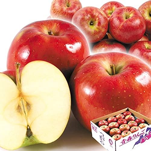 国華園 りんご 青森産 ご家庭用 サンつがる 10� 食品