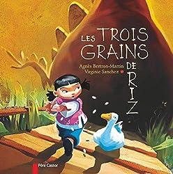 livre Les trois grains de riz