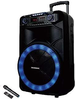 Olsenmark Party Speaker OMMS 1180