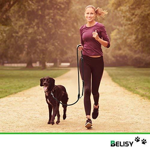 HUNDELEINE von BELISY – hochwertige Führleine und Doppelleine – 2 Meter Länge & 3-fach verstellbar – Laufleine/Leder-Leine – besonders praktisch, stabil & eng geflochten – schwarz – Premium Qualität - 2