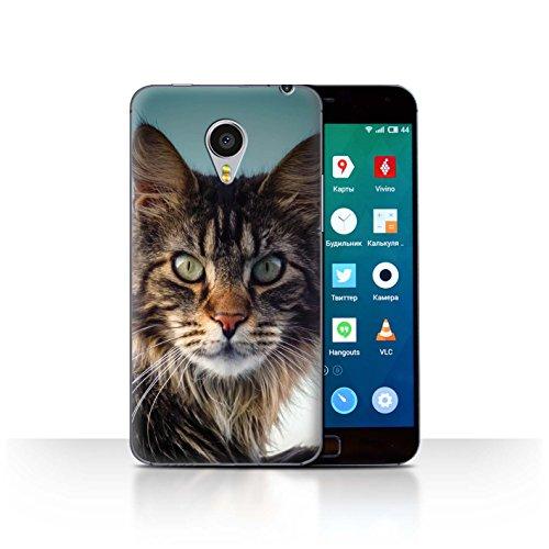 Stuff4® Hülle/Case für Meizu MX4 Pro/Maine Coon Muster Katze/Katzenrassen Kollektion