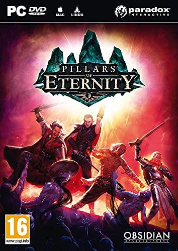 Pillars of Eternity - édition hero
