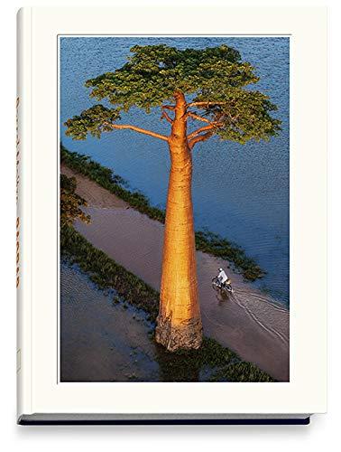 BAOBAB: Der Zauberbaum: L'arbre magique