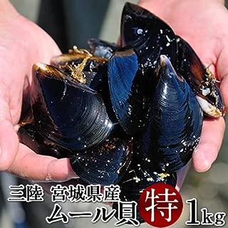 ムール貝 1kg(特大)殻付き 活ムール貝 三陸宮城県産 雄勝湾 漁師直送(イガイ ムラサキ貝 カラス貝)