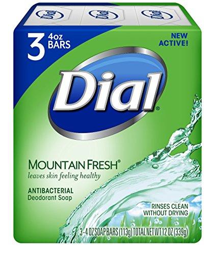 dial mountain fresh bar soap - 1