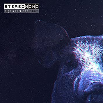 Pigs Can't See Stars