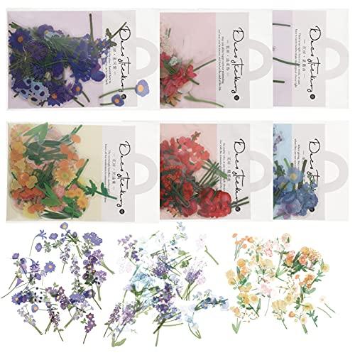 EXCEART 6 Packs Scrapbook Adesivi Floreali Estetica Fiore Washi Adesivi Natura Vegetale Fabbricazione della Carta del Computer Planner Diario Sticker