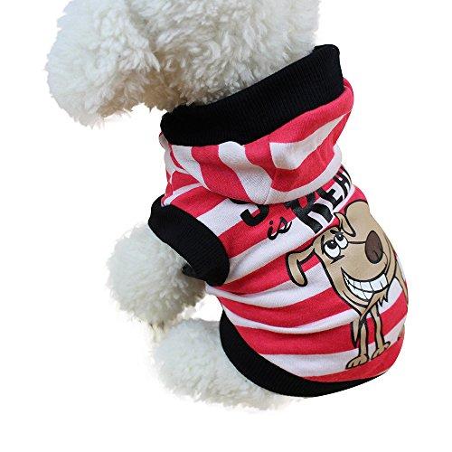 Routinfly Mode niedliche Kleine Haustier Hundebekleidung ,Hund Katze Pullover Welpen Mantel Jacke Kleidung HundeKleidung Hoodies Hundejacke Hündchen Pullover Mantel Haustier Welpen T-Shirt