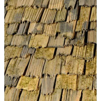 Holzschindeln – 30 Stück – Ideale Ergänzung zum Krippenbausatz HOCHALM – Handgeschlagen, an den Enden gebrochen – Eignen sich für die Gestaltung von alten Gebäuden, Schuppen oder KRIPPEN – C337439