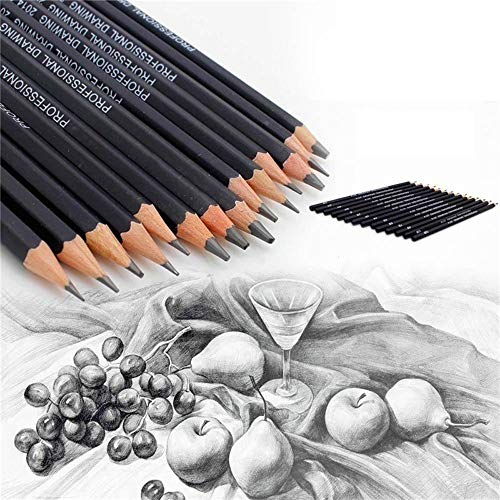 Sketch and Drawing Art Pencil Kit,Drawing Pencils 14pcs/Set 12B 10B 8B 7B 6B 5B 4B 3B 2B B HB 2H 4H 6H Graphite Sketching Pencils Professional Sketch Pencils Set for Drawing
