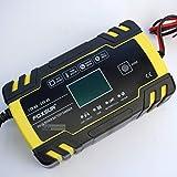 Leisure Pursuits 8 Amp Intelligent Car Battery Charger Pulse Repair Starter 12V/24V AGM/GEL UK#