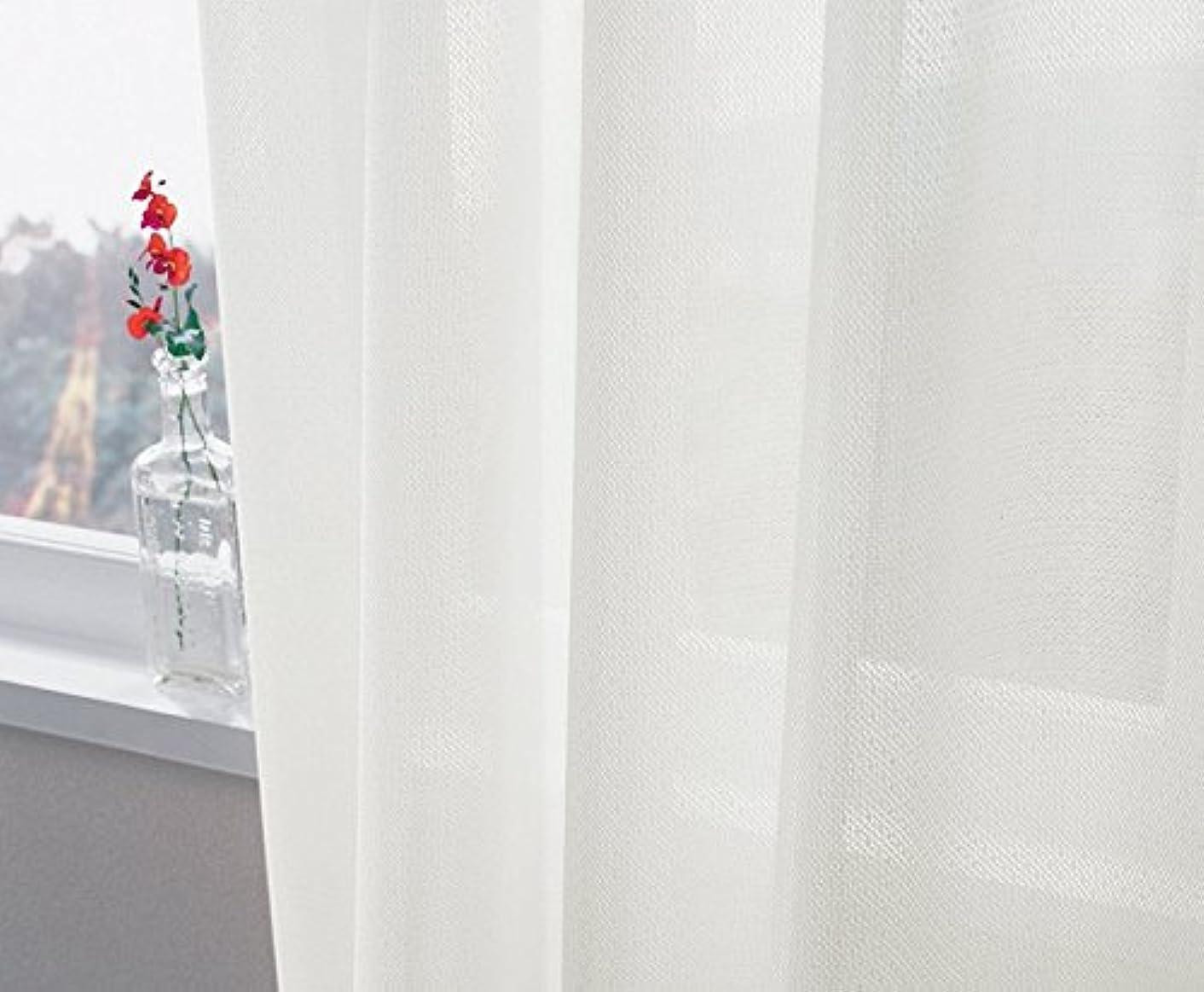 カリキュラムスプレー煙突東リ ボリューム感のある無地調ミラーレース カーテン2倍ヒダ KSA60478 幅:100cm ×丈:210cm (2枚組)オーダーカーテン