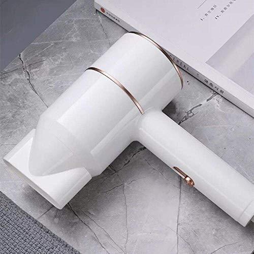 LTLJX Secador de Pelo, Corto Tiempo de Secado, la luz y, protección contra el sobrecalentamiento portátil, el Ajuste de Tres velocidades, 800W, Dormitorio, Viajes-Blanco LUDEQUAN (Color : White)